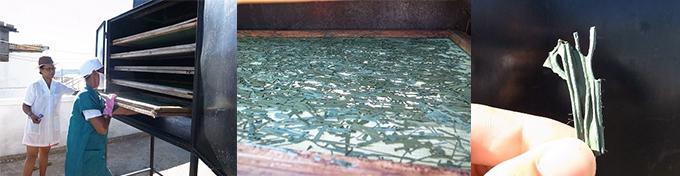 乾燥後のスピルリナ