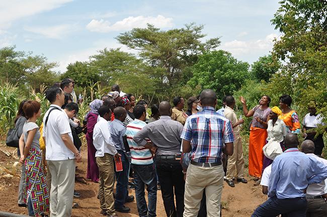 農業に従事するMF顧客のビジネスを視察